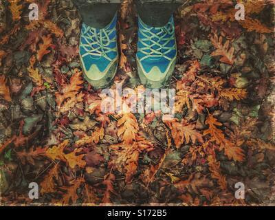 Un paio di scarpe da escursionismo in piedi sul bagnato Foglie di autunno  Foto Stock 73e19fc8cbe