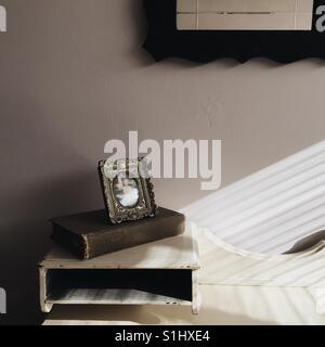 Still Life picture frame e prenota Foto Stock