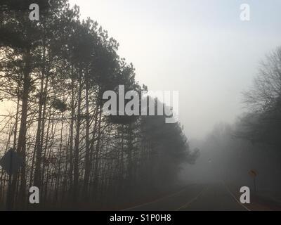 strada nebbiosa Foto Stock