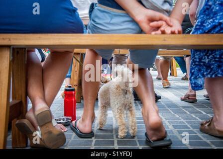 Seduti all'aperto con la famiglia Foto Stock