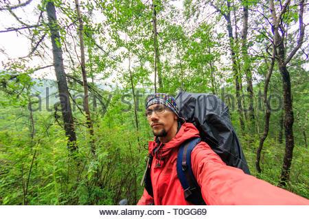 bed01dcf5b ... L'uomo turistico con uno zaino va lungo il percorso in una verde  foresta di