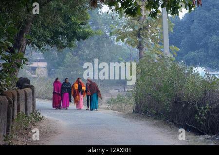 Un gruppo donna indiana sono a piedi attraverso la strada rurale in inverno mattina Foto Stock