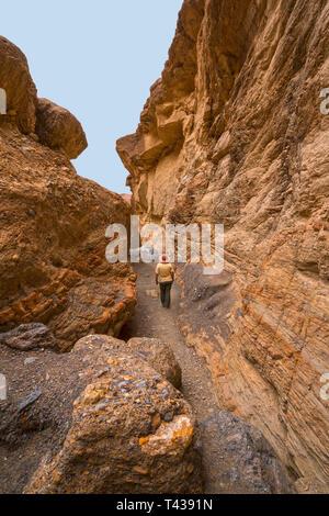 Escursioni a piedi attraverso uno stretto canyon in mosaico Canyon nel Parco Nazionale della Valle della Morte in California Foto Stock