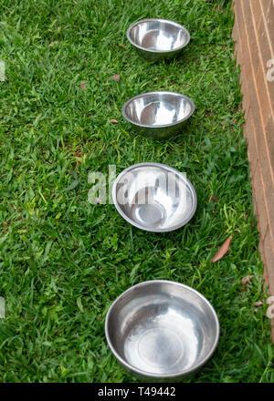 Un vicino uop vista di quattro metallo argento ciotole in una linea sull'erba fuori in giardino Foto Stock