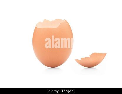 Il montante a guscio di uovo rotto contro uno sfondo bianco. La vita inizio concetto. Foto Stock