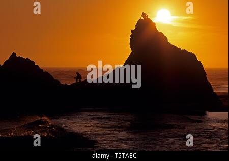 Southern Oregon costa con stagliano formazioni rocciose e fisherman seduti sulle rocce tramonto spettacolare Harris Beach State Park Oregon stato USA Foto Stock