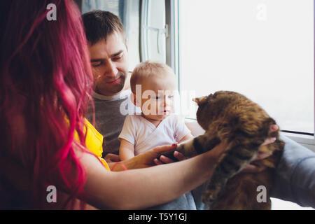 Giovane padre e madre giocando con il figlio e gatti.