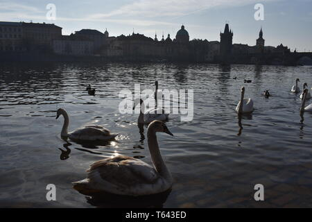 Kresty Krumlov Repubblica Ceca Marzo 18, 2017 viaggio Rep ceca migliori 10 Top 10 viaggi più Rep ceca bellissimo paesaggio storia storico viaggio Europa