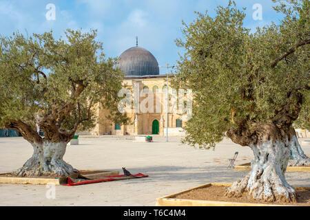 Israele, distretto di Gerusalemme, Gerusalemme. La Moschea di Al-Aqsa sul Monte del Tempio nella città vecchia. Foto Stock