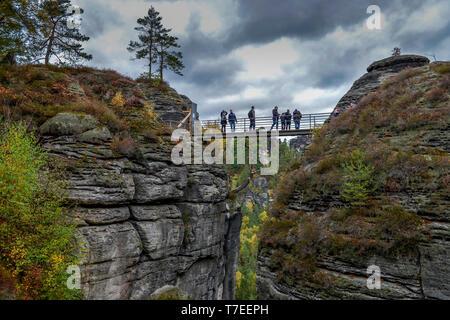 Burgruine Neurathen, Rathen, Nationalpark Saechsische Schweiz, Sachsen, Deutschland