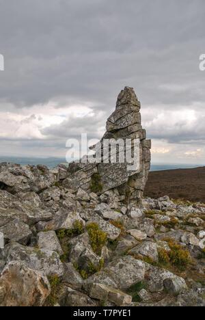Il Devil's Chair formazione rocciosa a Stiperstones Riserva Naturale in Shropshire, Regno Unito Foto Stock