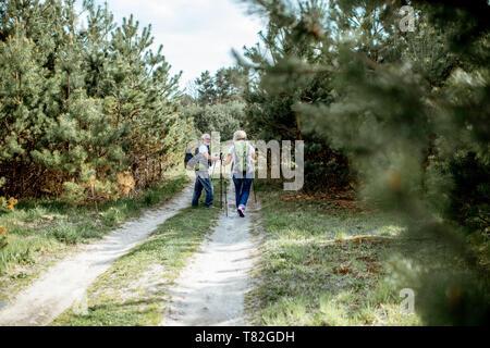 Coppia senior escursionismo con zaini sulla strada per il giovane foresta di pini, vista posteriore
