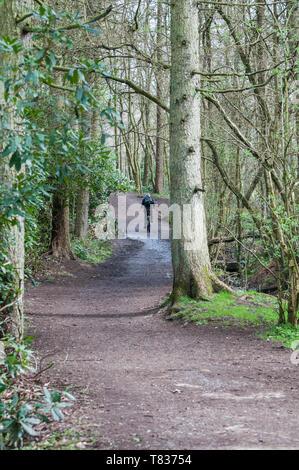 Escursioni in bicicletta attraverso Cuerden Valley Park, chorley, lancashire, Regno Unito Foto Stock