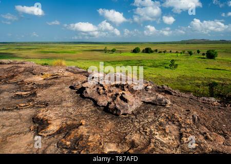 Vista spettacolare da Ubirr Rock in zone umide.