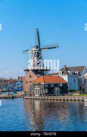 Haarlem, Paesi Bassi - 14 Aprile 2019: vista del paesaggio urbano di Harlem con De Adriaan mulino sul fiume Spaarne sullo sfondo a mezzogiorno di Haarlem, la Nether Foto Stock