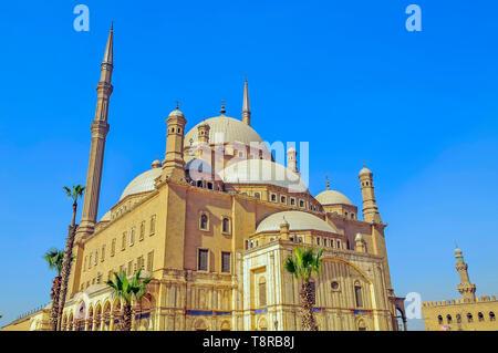 Grande Moschea di Muhammad Ali Pasha Cairo Egitto si trova la Cittadella di Salah El Din (Saladino) Cittadella del Cairo in Egitto