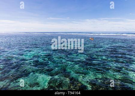 Famiglia facendo watersport kayak in chiaro oceano pacifico acqua nella barriera corallina su un isola tropicale, Samoa, Polinesia.