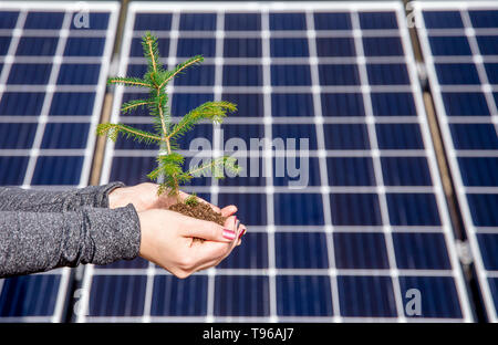 Salvataggio di natura utilizzando verde energia solare concetto. E accidentalmente anche divertente illusione ottica concetto, punti di sfarfallio, cambiando i posti sulla backg Foto Stock