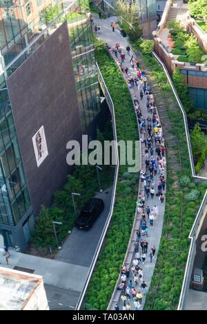 La linea alta, parco urbano ristrutturato da un elevata abbandonata della ferrovia a Chelsea, Manhattan New York City, NY / USA