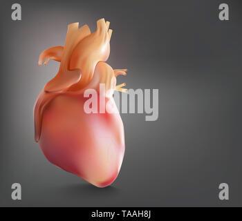 Cuore umano mostrano polvere è una immagine 3D.