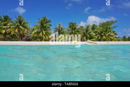 Mare tropicale shore con Canoe sulla spiaggia e palme da cocco con capanne, visto dalla superficie di acqua, atollo di Tikehau, Tuamotu, Polinesia francese, Pacific