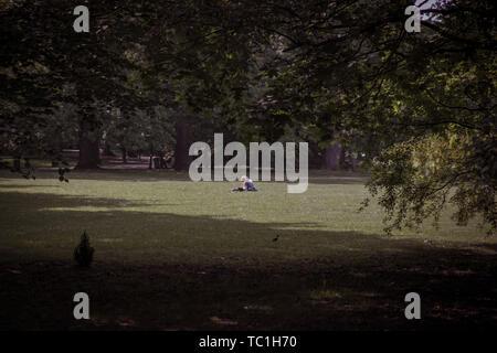 Ragazza solitaria lettura libro nel grande parco tra alberi Foto Stock
