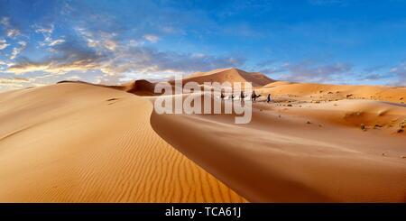 Giri in cammello sul Sahara dune di sabbia di Erg Chebbi Marocco. Foto Stock