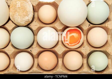 Crystal Clear, rotondo uova Foto Stock