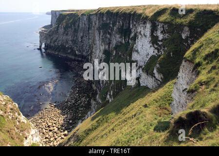 Clifs Bempton, Regno Unito Inghilterra Foto Stock