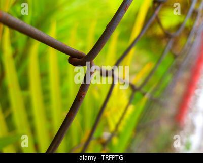 Metallo arrugginito recinto con sfondo di vegetazione