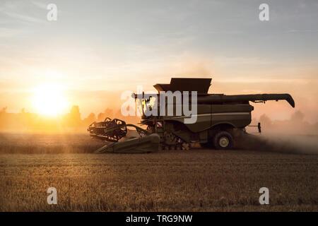 Mietitrebbia lavora su un campo al tramonto Foto Stock