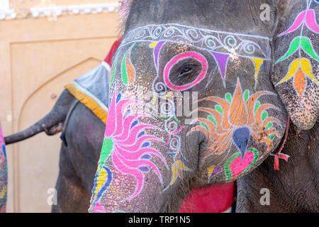 Ritratto di elefante dipinte a piedi fino al Forte Amber nella storica città di Amer, Jaipur, Rajasthan, India. Famosa meta di viaggio in India Foto Stock