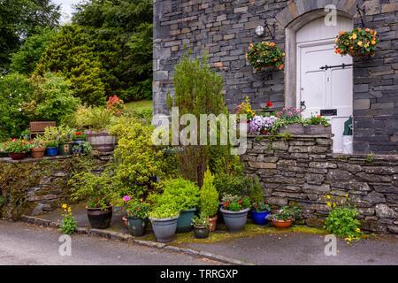 Piante in vaso esterno in un cottage garden, REGNO UNITO Foto Stock