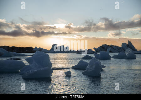 Iceberg galleggianti in acqua al tramonto. L'Islanda, Jokulsarlon laguna glaciale Foto Stock