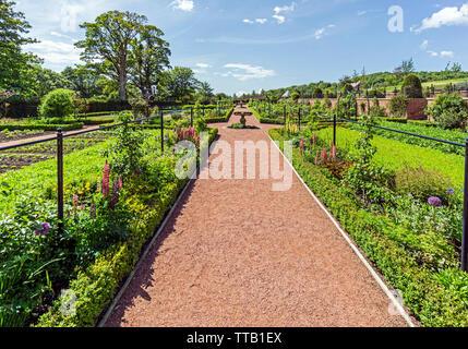 Il Queen Elisabeth giardini murati a Dumfries la casa e il giardino a Dumfries House Station Wagon nei pressi di Cumnock East Ayrshire Scotland Regno Unito Foto Stock