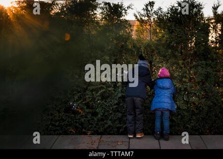 I fratelli di spionaggio a loro vicini cadono tramonto ora d'oro Foto Stock