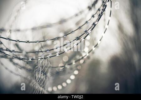 Metallo affilato filo spinato avvolto a spirale su una maglia trasparente recinzione metallica, in piedi nelle giornate grigie.