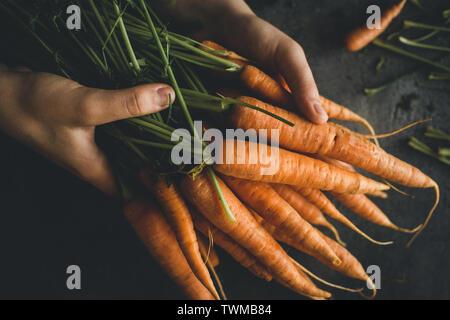 Fresche biologiche Nantes carote su sfondo scuro. Cibo sano. Foto Stock