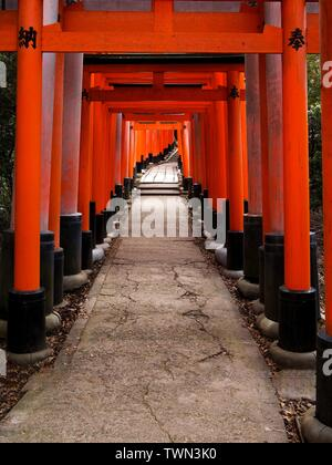 Torii rossi al Santuario di Fushimi Inari Taisha, situato alla base del monte Inari, Kyoto, Giappone. Foto Stock