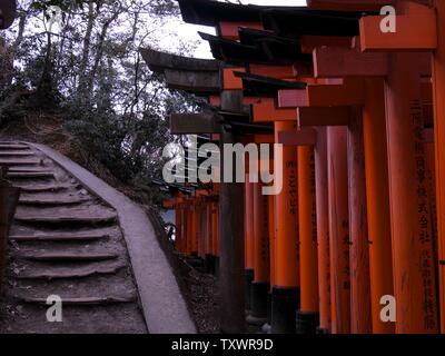 Red torii gates a Fushimi Inari Taisha, e scale a Inari Mountain Foto Stock