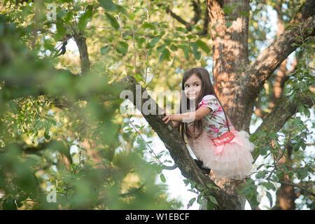 Poco ragazza giovane salito sulla struttura ad albero e seduto sul ramo di albero. Foto Stock