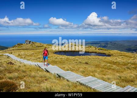 Donna escursionismo sulla passerella di legno, Mare di Tasman in background, Hump Ridge, Hump Ridge via, Fiordlands National Park, patrimonio mondiale UNESCO Wahipouna Te Foto Stock