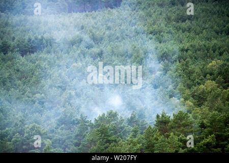 Alt Jabel, Germania. 04 Luglio, 2019. Nuvole di fumo salire dal parzialmente bruciato foresta vicino Alt Jabel (vista aerea da un elicottero). La situazione nella foresta zona incendio su una ex zona di addestramento militare vicino Lübtheen nel Meclemburgo-Pomerania Occidentale ha attenuato leggermente per la prima volta dallo scoppio dell'incendio. I primi abitanti furono in grado di tornare alle loro case che era stata cancellata come una precauzione. Credito: Jens Büttner/dpa-Zentralbild/dpa/Alamy Live News Foto Stock