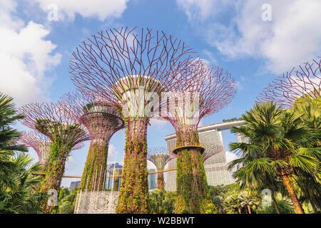MARINA BAY, Singapore - Gennaio 6, 2019 : Singapore skyline della città a Supertree Grove di giardini dalla baia Foto Stock