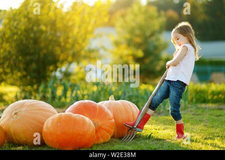 Carino bambina divertendosi con enormi zucche su una zucca patch. Kid Raccolta zucche di country farm nelle calde giornate d'autunno. Tempo per la famiglia a Thanksgivin Foto Stock