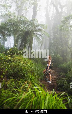 Donna che cammina nella mistica nebbia tropicale foresta pluviale. Piante enormi e giurassico atmosfera Foto Stock