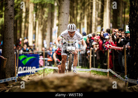 26 MAGGIO 2013 - Nove Mesto na Morave, Repubblica ceca. Nino Schurter a UCI Mountain Bike Cross Country Coppa del mondo. Foto Stock