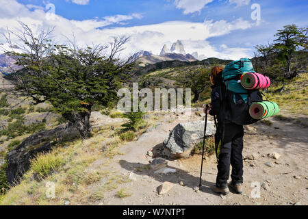 Escursionista sul sentiero a Laguna Torre sotto il Cerro Torre, con il Monte Fitz-Roy in background, parco nazionale Los Glaciares, Patagonia, Argentina. Gennaio 2006. Modello rilasciato. Foto Stock