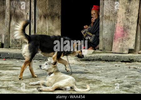 Sapa, Vietnam - 24 agosto: Red Dao donna etnica nella vostra casa il 24 agosto 2018 di Sapa, Vietnam. Foto Stock