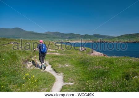 Donna escursionismo il sentiero costiero in Ballydavid, Curragraigue, Boherboy, nella contea di kerry, munster, irlanda